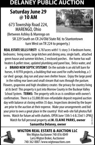 Delaney Public Auction